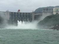 水电站泄洪万吨鲟鱼逃逸 农业部:扩散得哪儿都是