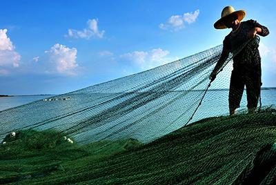 《湖畔渔翁》 作者:樊哲平