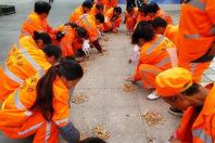西安十余名环卫工半天捡4000多个烟头