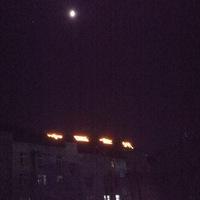 明月照亮中国金州,夜晚虫儿呜歌颂和诣!