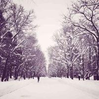 2019,亳州第一场瑞雪