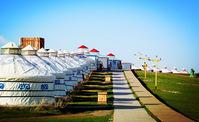 呼伦贝尔大草原,中国最美的夏天!