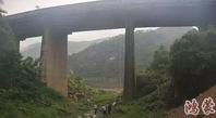 男子攀枝花偷盗芒果被村民发现 逃跑时跳桥身亡