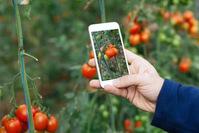 农业农村部:2020年农业农村科教环能和市场信息工作要点 / 政府投资基金加强监管,私募基金行业或受影响