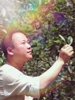 武夷山馋茶园茶业有限公司—林世华